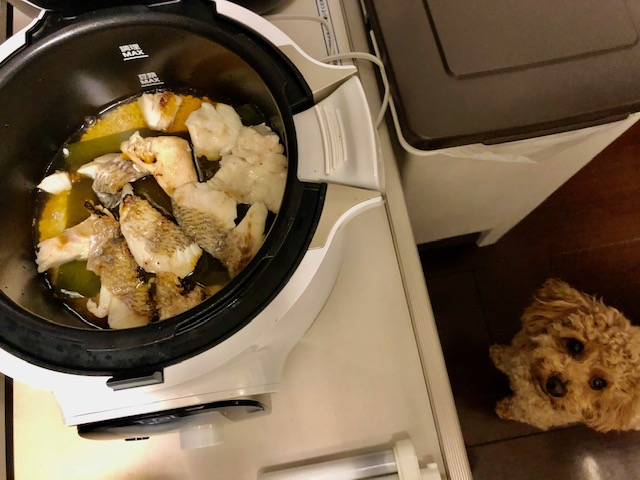 すっかり料理上手になりました!(^^)/